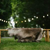 Bench with a Reindeer Skin lying across it sits on green grass, festoon lighting hangs above it