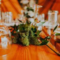 Moss and green foliage decorate a wooden table